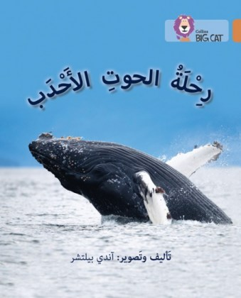 9780008156640-collins-big-cat-arabic-readers-journey-of-humpback-whales-level-12